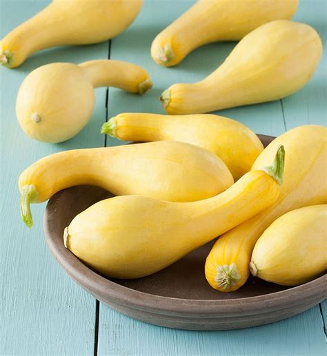 Crookneck Squash Nutritional Facts, How to Cook, Recipes