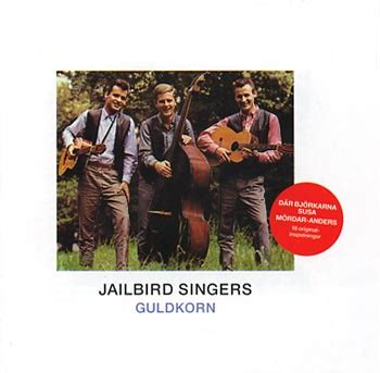 Där Björkarna Susa Lyrics & Chords By Jailbird Singers