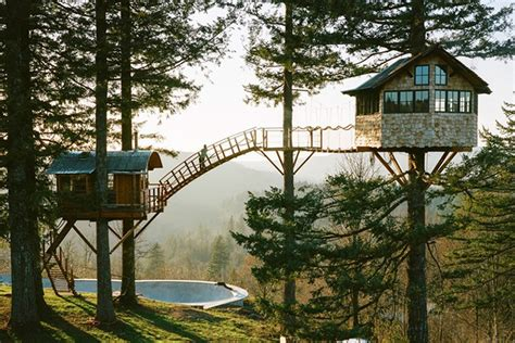 This Self-Built Treehouse Has a Skate Bowl and Hot Tub