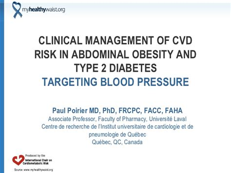 Clinical Management of CVD Risk in Abdominal Obesity and