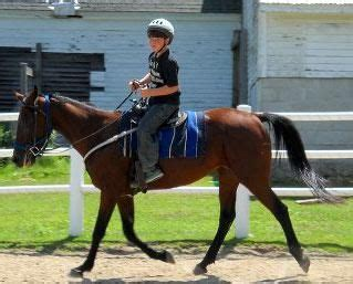 Carousel Horse Farm has lessons for every level and age