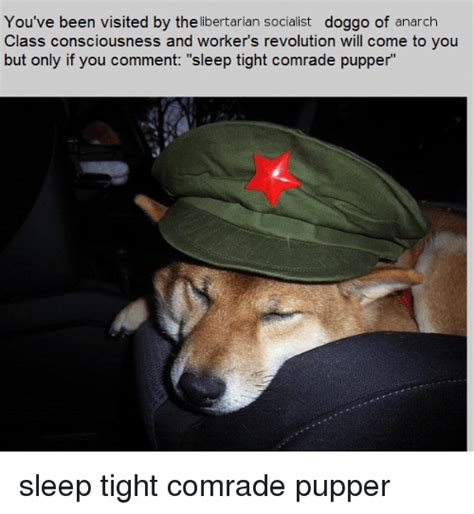 You've Been Visited by the Libertarian Socialist Doggo of